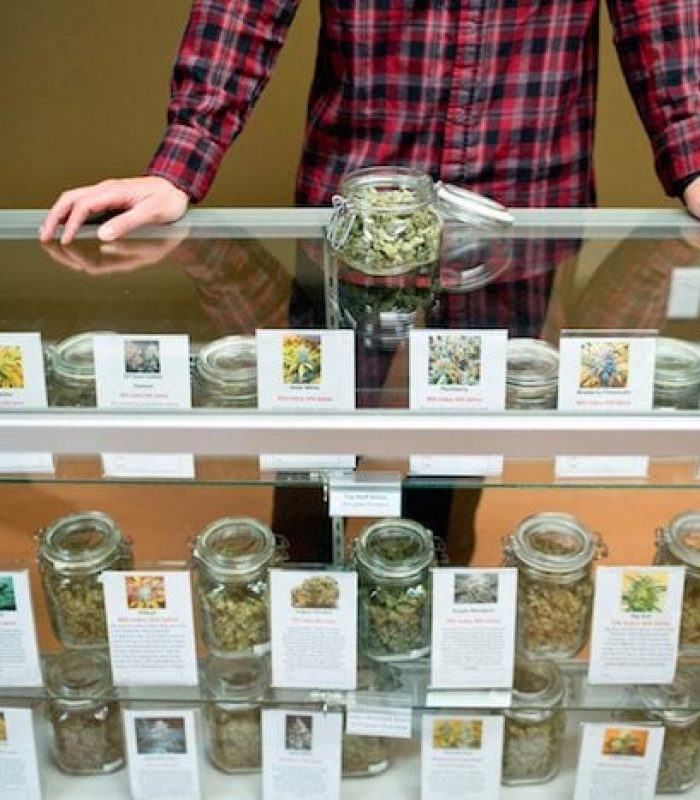 Budtender: How to Know You've Found a Good One