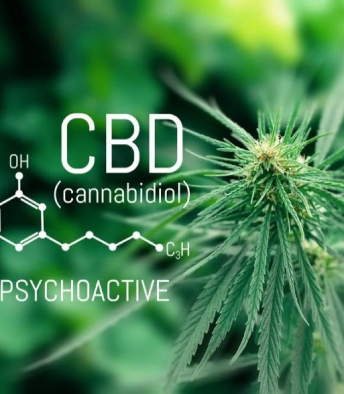 Non Psychoactive Cannabinoids May Still Impact the Brain