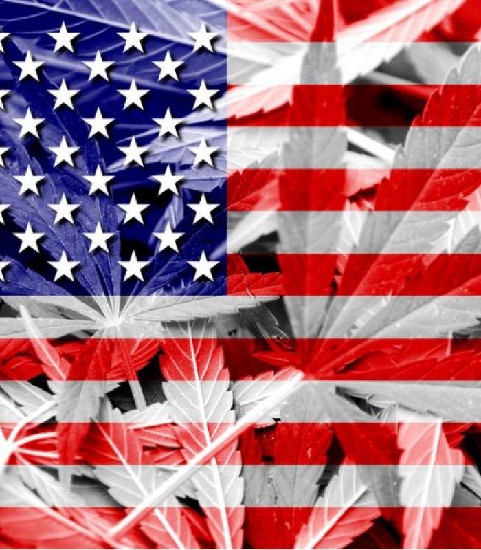 Gallup Poll: Most Americans Support Legalization of Cannabis