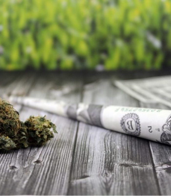 What Do Legal States Do With All That Cannabis Tax Revenue?