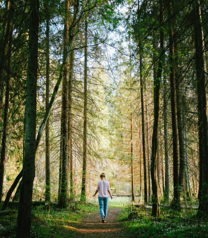 Alpha Pinene: The Pine Scent You Love Has Therapeutic Benefits