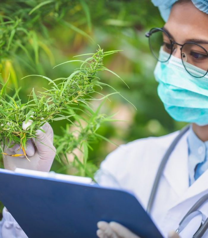 Unfortunately, Cheap Fertilizer Puts Heavy Metals into Your Grow