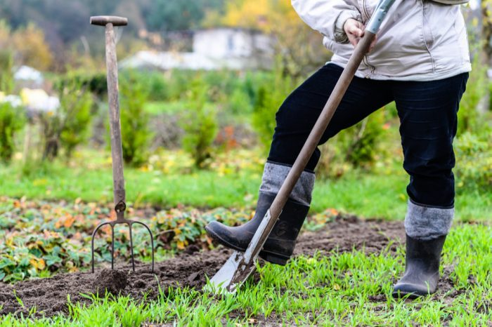 Fall Gardening Tips to Prep for Next Year's Cannabis Grow