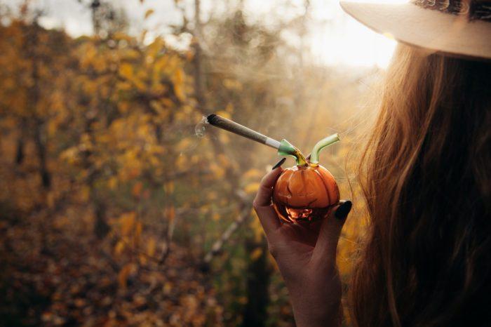 Top 5 Cannabis Strains For Autumn
