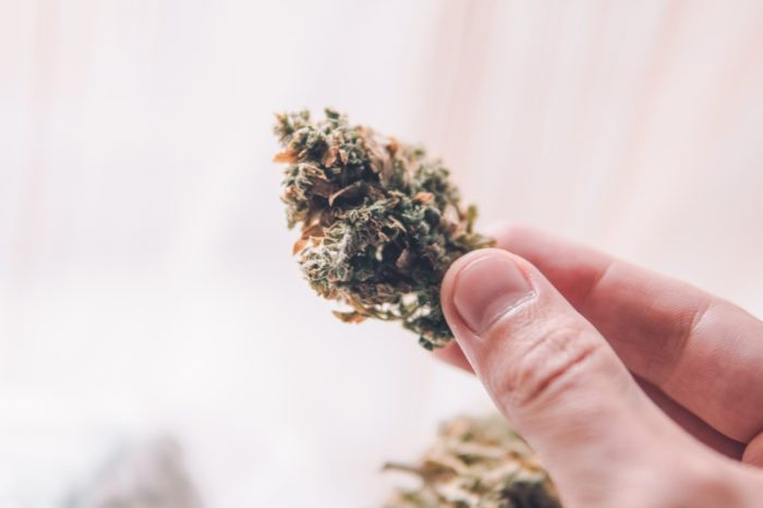 What is Potency and Does it Help Cannabis Patients?