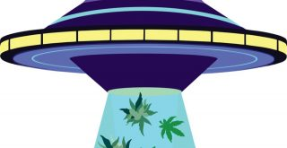animation of UFO sucking up cannabis leaves